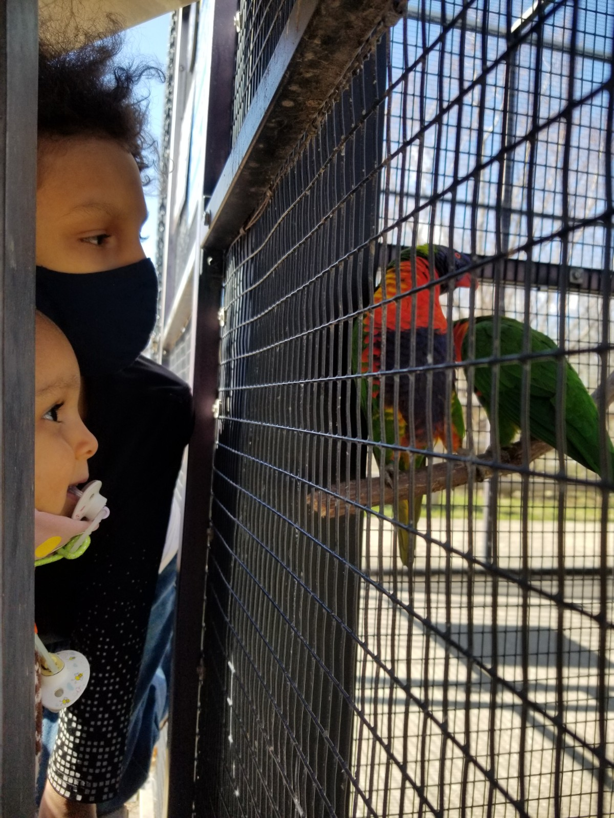 Kansas City Zoo March 2020